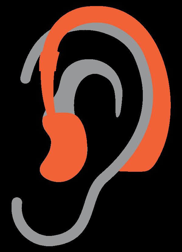 bte-orelha